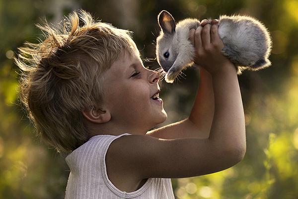 留住美好 孩子动物亲密的温馨时刻